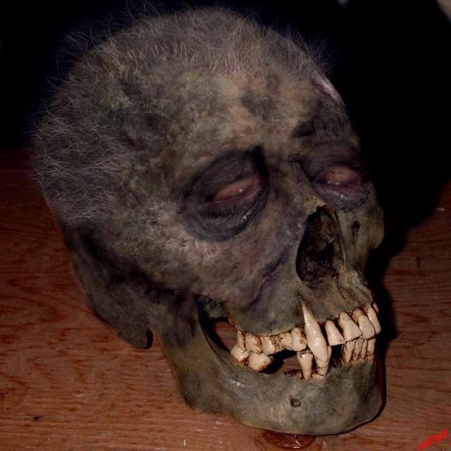 dracula skull